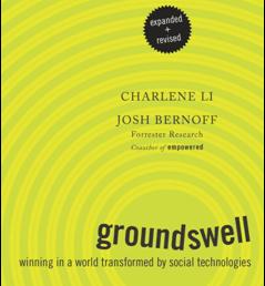 Mi participación en El mundo de groundswell